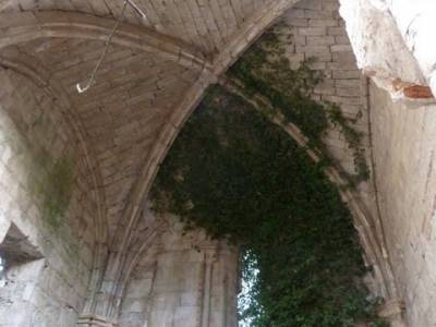 Monasterio de Bonaval - Cañón del Jarama - Senderismo Guadalajara; senderismo valencia rutas